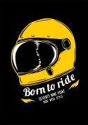 Plakat 79 Point Born To Ride