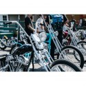 Born-Free: Motorcycle Show Book